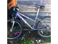 Women's Raleigh 26'' push bike