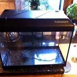 55 litre glass aquarium