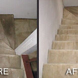 carpet cleaning best in the GTA!