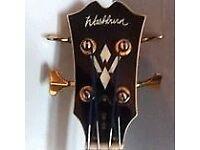 Washburn ab40 electro-acoustic bass