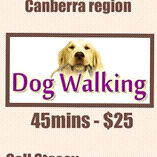 Dog walking & pet sitting/boarding canberra Florey Belconnen Area Preview