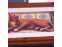Pine framed cat pictures
