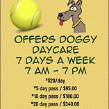 Green Acres Dog Boarding, Daycare and Grooming