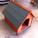 Dog Kennel New Lambton Newcastle Area Preview