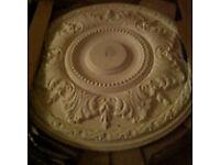 New Artic's medium ceiling rose