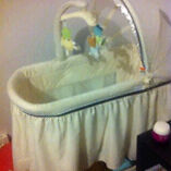 FISHER & PRICE BASSINET Wentworth Falls Blue Mountains Preview