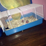 Small animal cage !