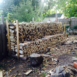 Firewood Peterborough Peterborough Area image 1