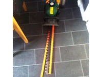 Petrol hedge cutter