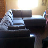 New couch 2 months old