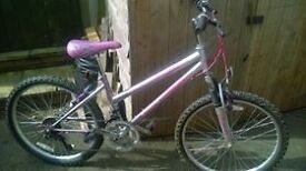 ladies / girls full suspension mountain bike very pink and girly very good condition fully serviced