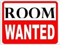 ROOM WANTED BY PROFESSIONAL SINGLE MALE ASAP