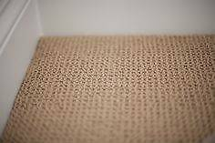 Wool Carpet in GREAT Condition Ascot Brisbane North East Preview