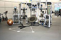 Life Fitness Synergie 360