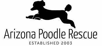 Arizona Poodle Rescue   eBay for Charity
