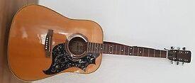 Made in Japan 1970s Jumbo Acoustic Guitar BM Mammoth