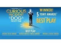 The Curious Incident of the Dog in the Night Time - Gieuled Theatre- London - Friday 28 October
