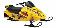 Looking for anyone who has a skidoo mini z