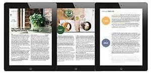 Website Design, SEO, Social Media Management, Mobile Website