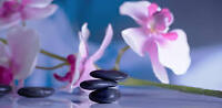 Outcall and incall appt for massage therapy at reasonable prices