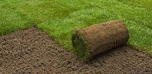 SOD FOR SALE - 560 sq FT - $200 plus HST