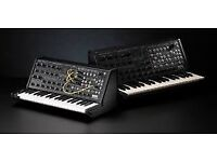 Korg MS20 mini real analogue modular synth