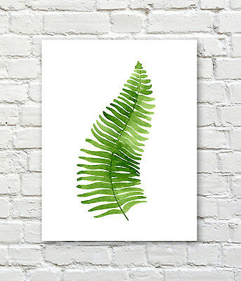 Fern Leaf Watercolor Painting Art Print by Artist DJ Rogers