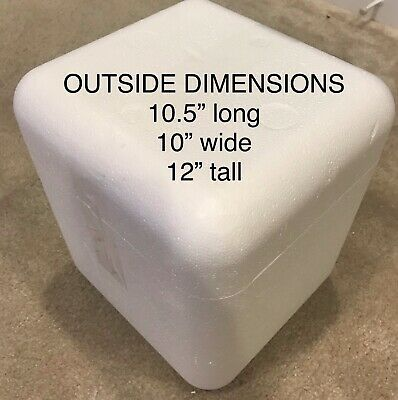 Styrofoam Shipping Cooler Container 10.5x10x12