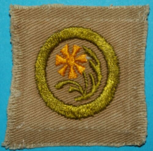BOTANY TYPE A MERIT BADGE - FULL SQUARE  -   BOY SCOUT 10138