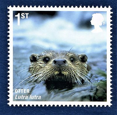 GB Otter Lutra lutra Lutrinae Mustelids on a stamp - U/M