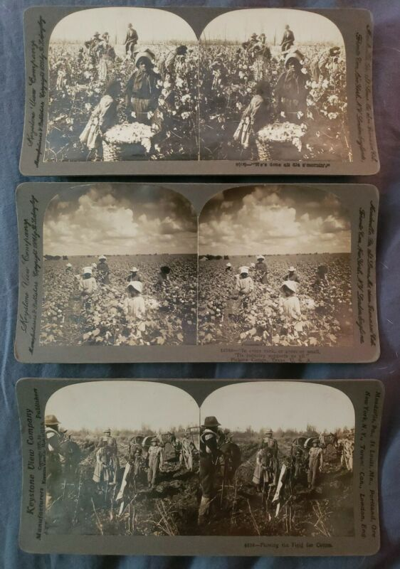 3 choice African American 1905 dated Stereopticon Cards Cotton