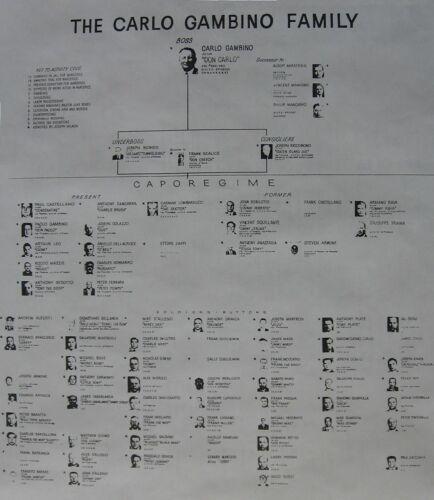 CARLO GAMBINO FAMILY CHART  8X10 PHOTO MAFIA ORGANIZED CRIME MOB MOBSTER PICTURE
