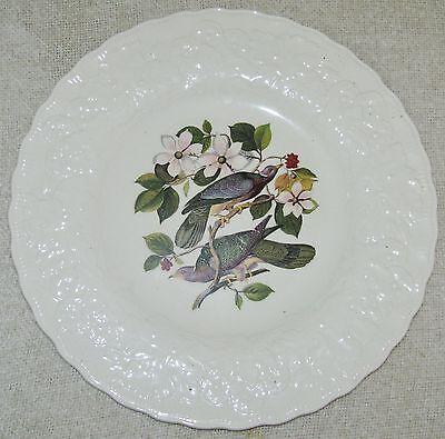 Alfred Meakin BIRDS OF AMERICA Embossed Floral Rim DINNER PLATE Pigeon #367