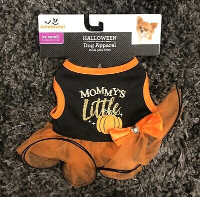 Celebrity Halloween Outfit (Celebrate Halloween Dog Outfit XX SMALL (Toy Yorkie / Toy Fox)