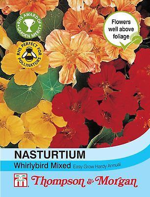 Tropaeoleum Majus Orchid Flame T/&M Nasturtium approx. 20 seeds