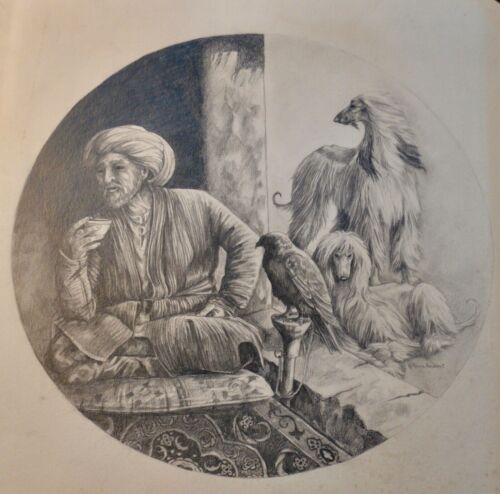 Vintage Original Signed Marcia Van Woert Afghan Hound Artwork Pencil Drawing