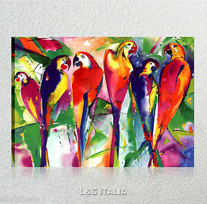 Pappagalli quadro animali stampe quadri moderni Quadri moderni arredamento prezzi
