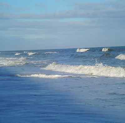 Wyndham Ocean Blvd  Sept 8 15  3B  Myrtle Beach  Sc  Other Dates Available