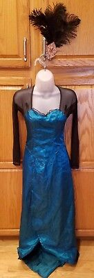 Oz The Great And Powerful Deluxe Evanora Costume Dress Adult XS 2-4-6