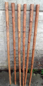 3 Chestnut Shafts Shanks Seasoned Straightened Stickmaking Walking Stick Making