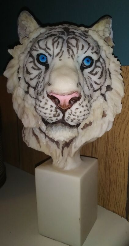 "White Tiger Bust~ 12"" Tall~Beautiful Blue Eyes~"