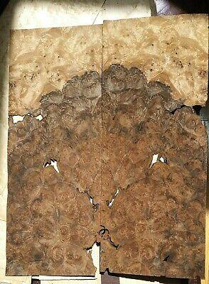 2 Pieces Of Walnut Burl Wood Veneer 15 12 X 6 Each 142