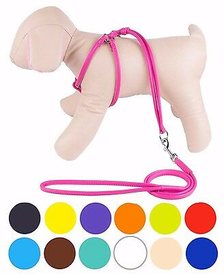 Rolled Leather Dog Harness Step-In Leash Small Pink Red White Blue Green Black (Pink Leather Dog Harness)