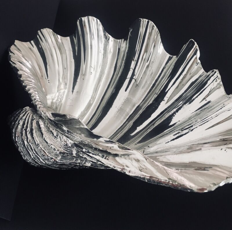 Large Silvered Clam Shell, Sea Shell