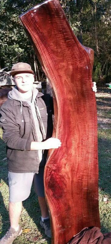 FINISHED Both Sides Fiddleback Red Robusta Eucalyptus Headboard Exotic Slab
