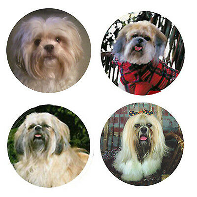 Lhasa Apso Magnets 4 Way-Cool Lhasas for your Fridge or Collection-A Great Gift