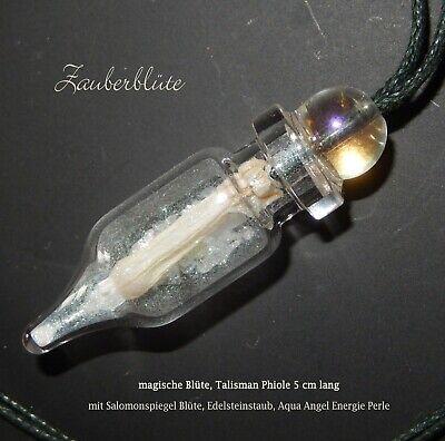 Zauberblüte Schutz Amulett *Salomonspiegel* Magie Hexe WitchTalisman Natur Wicca