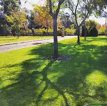 Lawn and Garden Maintenance Wanneroo Wanneroo Area Preview