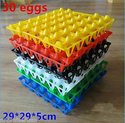 6 Pcs 30 Egg. Tray 29 29 5 Cm Chicken Egg