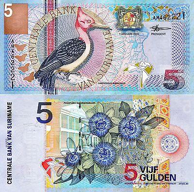 SURINAME 5 Gulden Banknote World Paper Money UNC Currency Pick p146 Woodpecker